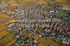 Ribeauville-11